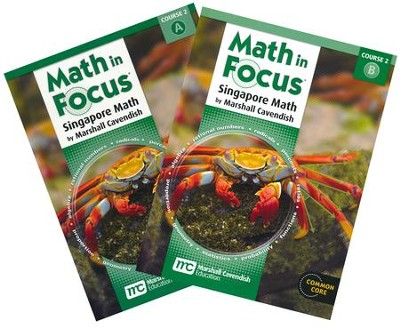 Math in Focus Grade 7 Course 2 Student Book Bundle A and B Set  -