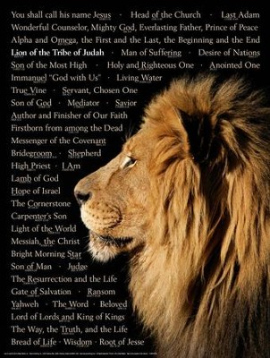 Lion of Judah Laminated Wall Chart   -