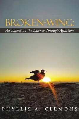 Broken-Wing: An Expose' on the Journey Through Affliction - eBook  -     By: Phyllis Clemons