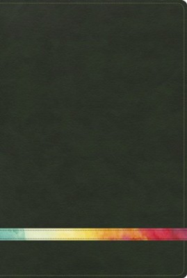 Biblia de Estudio Arco Iris RVR 1960, Verde/Multi-color, I. (RVR  1960 Rainbow Study Bible, Green/Multi-color LeatherTouch, I.)  -
