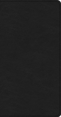 Csb share jesus without fear new testament brown leathertouch csb share jesus without fear new testament brown leathertouch fandeluxe Image collections