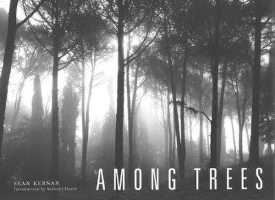 Among Trees   -     By: Sean Kernan