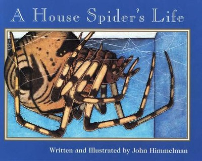 A House Spider's Life   -     By: John Himmelman