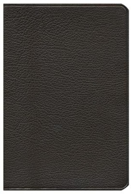 KJV Pitt Minion Reference, Goatskin, brown  -