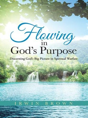 Flowing in Gods Purpose: Discerning Gods Big Picture in Spiritual Warfare - eBook  -     By: Irwin Brown
