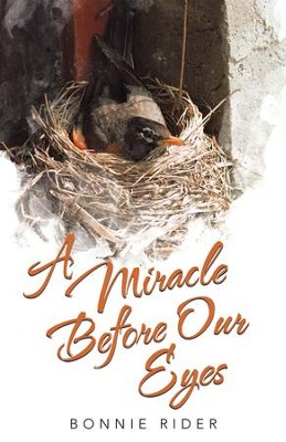 A Miracle before Our Eyes - eBook  -     By: Bonnie Rider