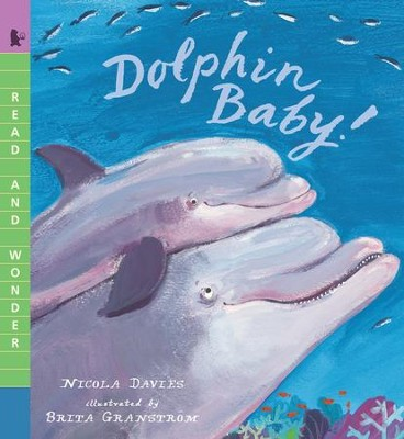 Dolphin Baby!  -     By: Nicola Davies     Illustrated By: Brita Granstrom
