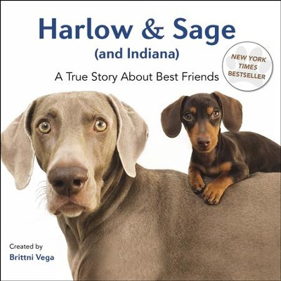 Harlow & Sage (and Indiana): A True Story About Best Friends - eBook  -     By: Brittni Vega