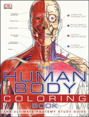 the human body coloring book by dk publishing - Human Body Coloring Book