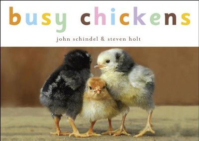 Busy Chickens - eBook  -     By: John Schindel, Steven Holt