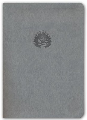 ESV Reformation Study Bible, 2015 Edition, Light Gray  Imitation Leather  -     By: R.C. Sproul