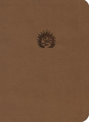 NKJV Reformation Study Bible, 2016 Edition, Light Brown Imitation Leather  -     By: R.C. Sproul