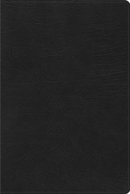 RVR 1960 Biblia de Estudio Arco Iris, negro imitaci&#243n piel (Rainbow Study Bible, Black Imitation Leather)  -
