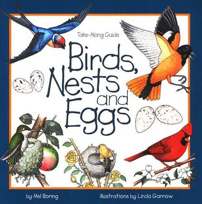 Birds, Nests and Eggs   -     By: Mel Boring
