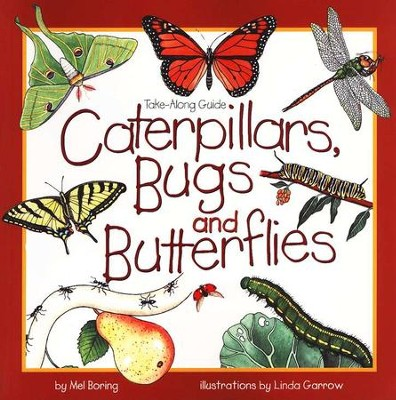 Caterpillars, Bugs and Butterflies   -     By: Mel Boring