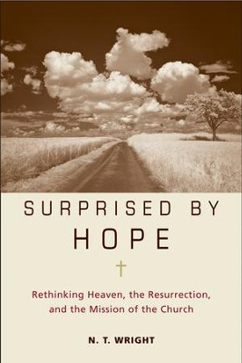 Surprised by hope ebook nt wright 9780061940590 surprised by hope ebook by nt wright fandeluxe Image collections