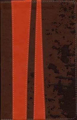 KJV Teen Study Bible Soft leather-look, burnt orange/fudge   -     By: Lawrence O. Richards, Susan Richards
