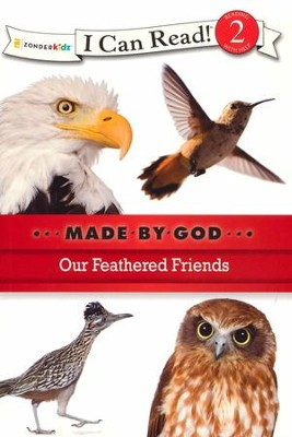Our Feathered Friends  -