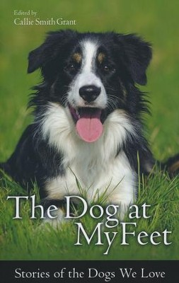 The Dog at My Feet: Stories of the Dogs We Love  -     By: Callie Smith Grant