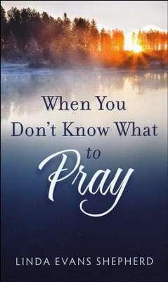 When You Don't Know What to Pray  -     By: Linda Evans Shepherd