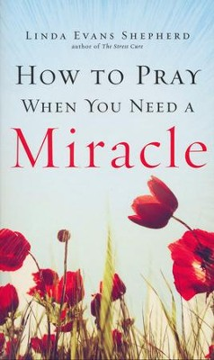 How to Pray When You Need a Miracle  -     By: Linda Evans Shepherd