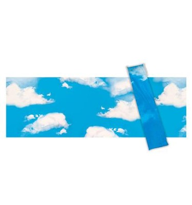 Sky with Clouds Backdrop, pack of 2  -