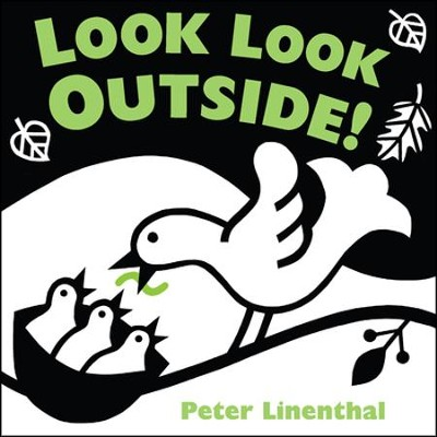 Look Look Outside!  -     By: Peter Linenthal