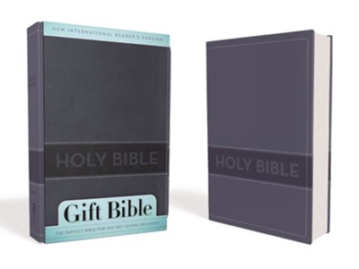 NIrV Gift Bible, Duo-Tone Slate Blue  -