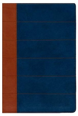 Santa Biblia Thompson Edicion Especial Para El Estudio Biblico-Rvr 1960, Imitation Leather, Blue/Orange  -