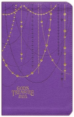 NIV God's Treasure Holy Bible Amethyst, Imitation Leather  -