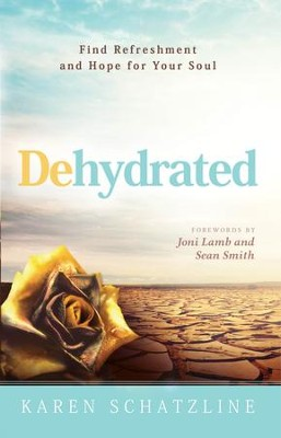 Dehydrated: Find Refreshment and Hope for Your Soul - eBook  -     By: Karen Schatzline