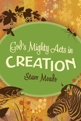 God's Mighty Acts in Creation - eBook  -     By: Starr Meade