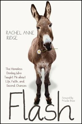 Flash: The Homeless Donkey Who Taught Me about Life, Faith, and Second Chances - eBook  -     By: Rachel Ridge