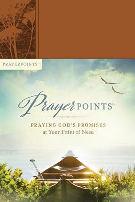 PrayerPoints: Praying God's Promises at Your Point of Need - eBook  -     By: Ken Petersen