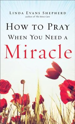 How to Pray When You Need a Miracle - eBook  -     By: Linda Evans Shepherd