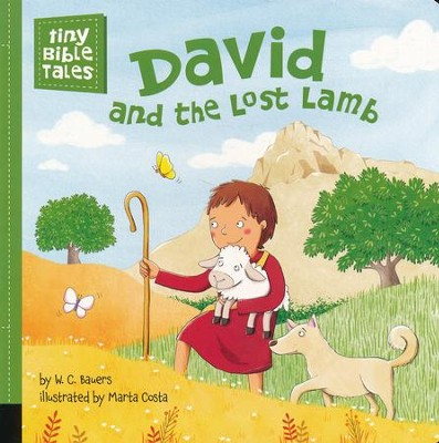 David and the Lost Lamb   -     By: W.C. Bauers