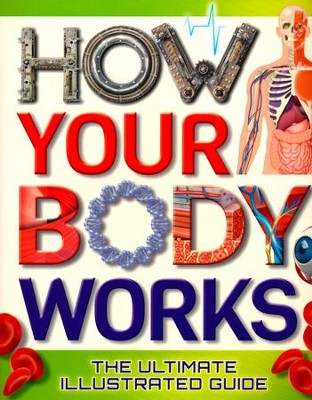 How Your Body Works: The Ultimate Illustrated Guide  -     By: Thomas Canavan
