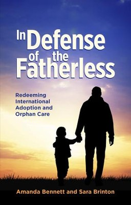 In Defence Of The Fatherless: Redeeming International Adoption & Orphan Care - eBook  -     By: Amanda Bennet, Sara Brinton