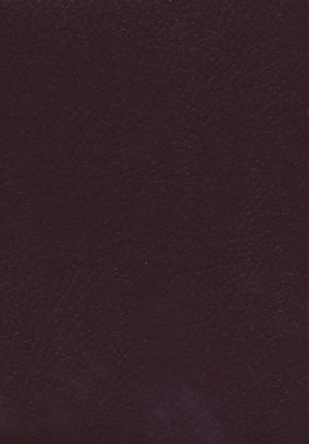KJV Super Giant Print Reference Bible, Imitation leather,  Burgundy, Thumb-Indexed  -