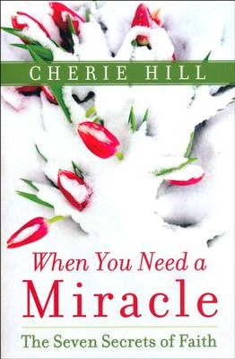 When You Need a Miracle: The Seven Secrets of Faith  -     By: Cherie Hill