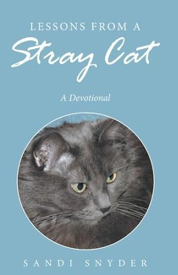 Lessons from a Stray Cat: A Devotional - eBook  -     By: Sandi Snyder