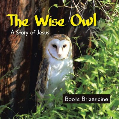 The Wise Owl: A Story of Jesus - eBook  -     By: Boots Brizendine