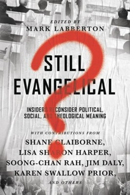 Still Evangelical? Insiders Reconsider Political, Social, and Theological Meaning  -     By: Mark Labberton
