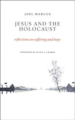 Jesus and the Holocaust: Reflections on Suffering and Hope  -     By: Anthony Grafton