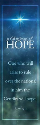 Christmas of Hope Vinyl Banner (2 x 6)  -