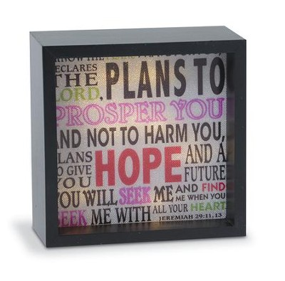 I Know the Plans, LED Lighted Art   -