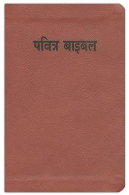 Hindi Bible (Easy-To-Read)  -     By: World Bible Translation Center