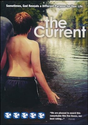 The Current, DVD   -