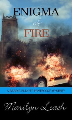 Enigma of Fire - eBook  -     By: Marilyn Leach