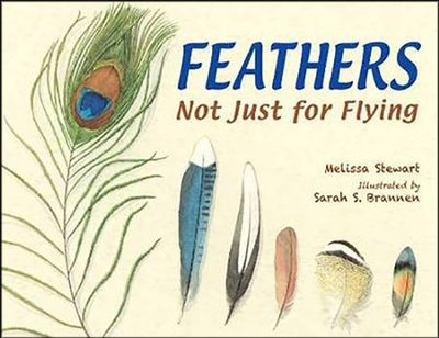 Feathers: Not Just for Flying  -     By: Melissa Stewart     Illustrated By: Sarah S. Brannen